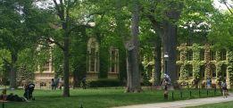 campus 5