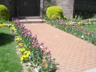 princetonflowers