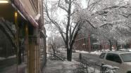 Tree limb down at the corner of Witherspoon and Hulfish streets in Princeton. Charles Kim photo